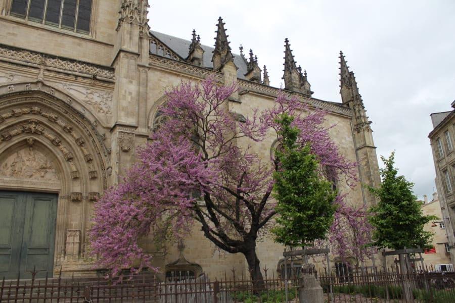 Basílica de Saint-Michel em Bordeaux.