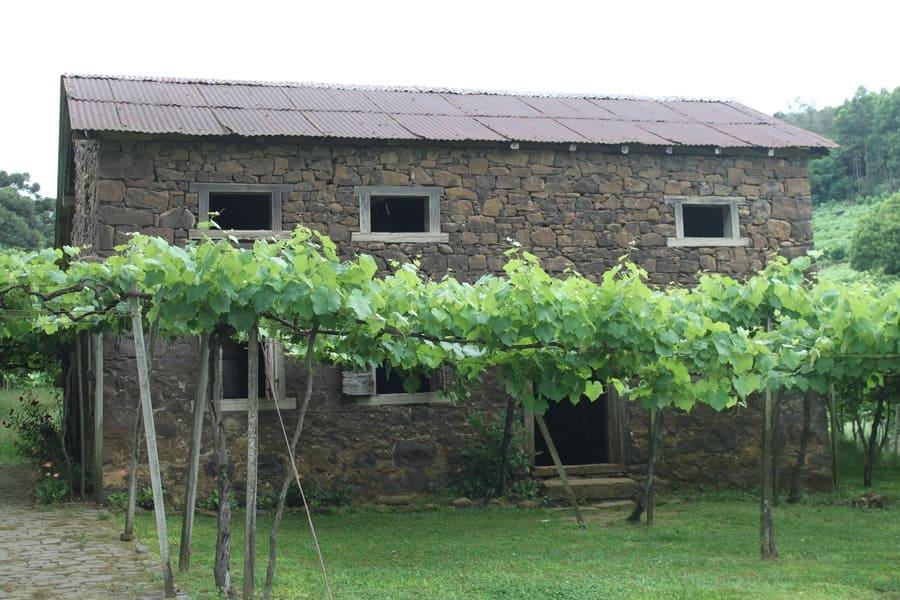 Cantina Strapazzon - Caminhos de Pedra em Bento Gonçalves