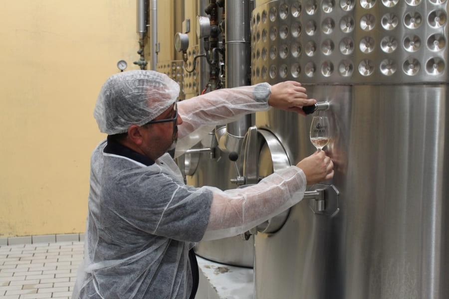 Prova do vinho retirado do tanque de aço durante o Minicurso de degustação da Vinícola Miolo