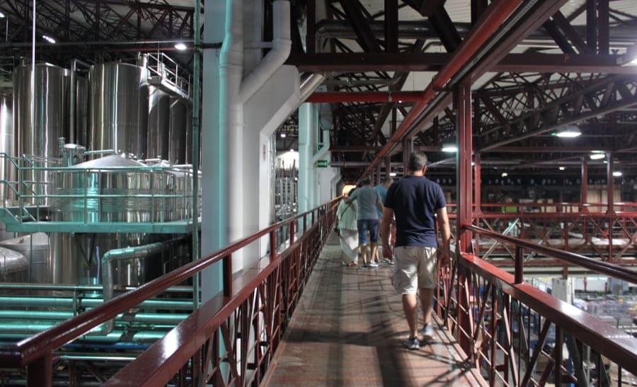 Visita com degustação à Vinícola Salton - área de produção