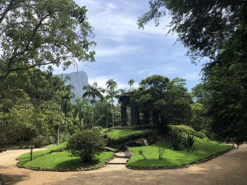 View of the Corcovado Mountain, with Christ the Redeemer at the top, from the Botanical Garden of Rio de Janeiro