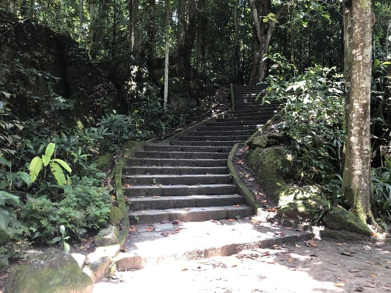 Trilhas do Parque Lage no Rio de Janeiro
