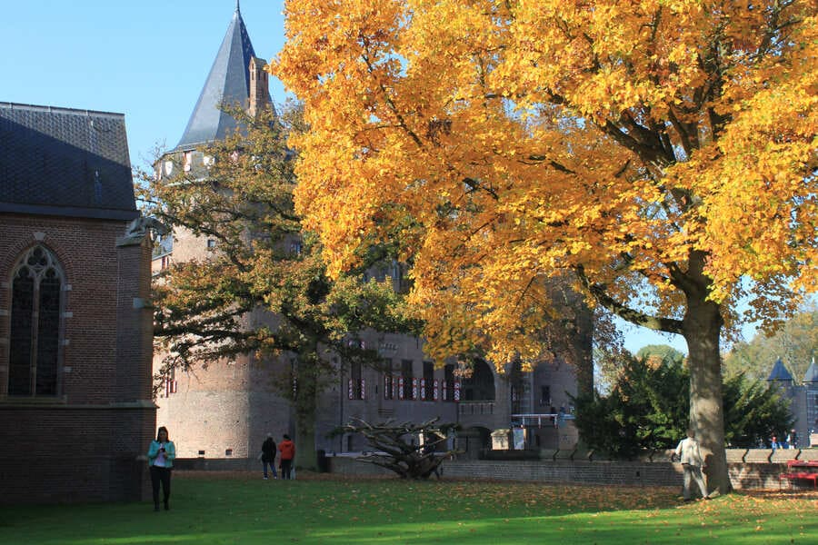 Outono na Europa e a variedade de cores das folhas das árvores